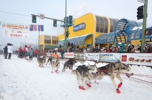 The Iditarod Trail Sled Dog Race starts in Anchorage Alaska the first Saturday in March.